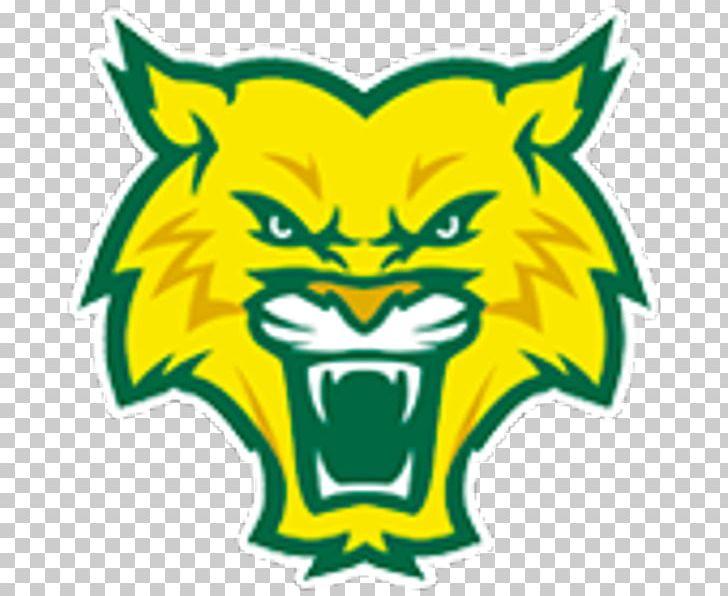 Arizona Wildcats GORC Park Green PNG, Clipart, Admission.