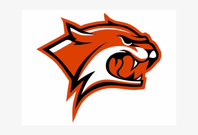 Download Free png Orange Wildcat Logo Mascot Template Vector Unh.