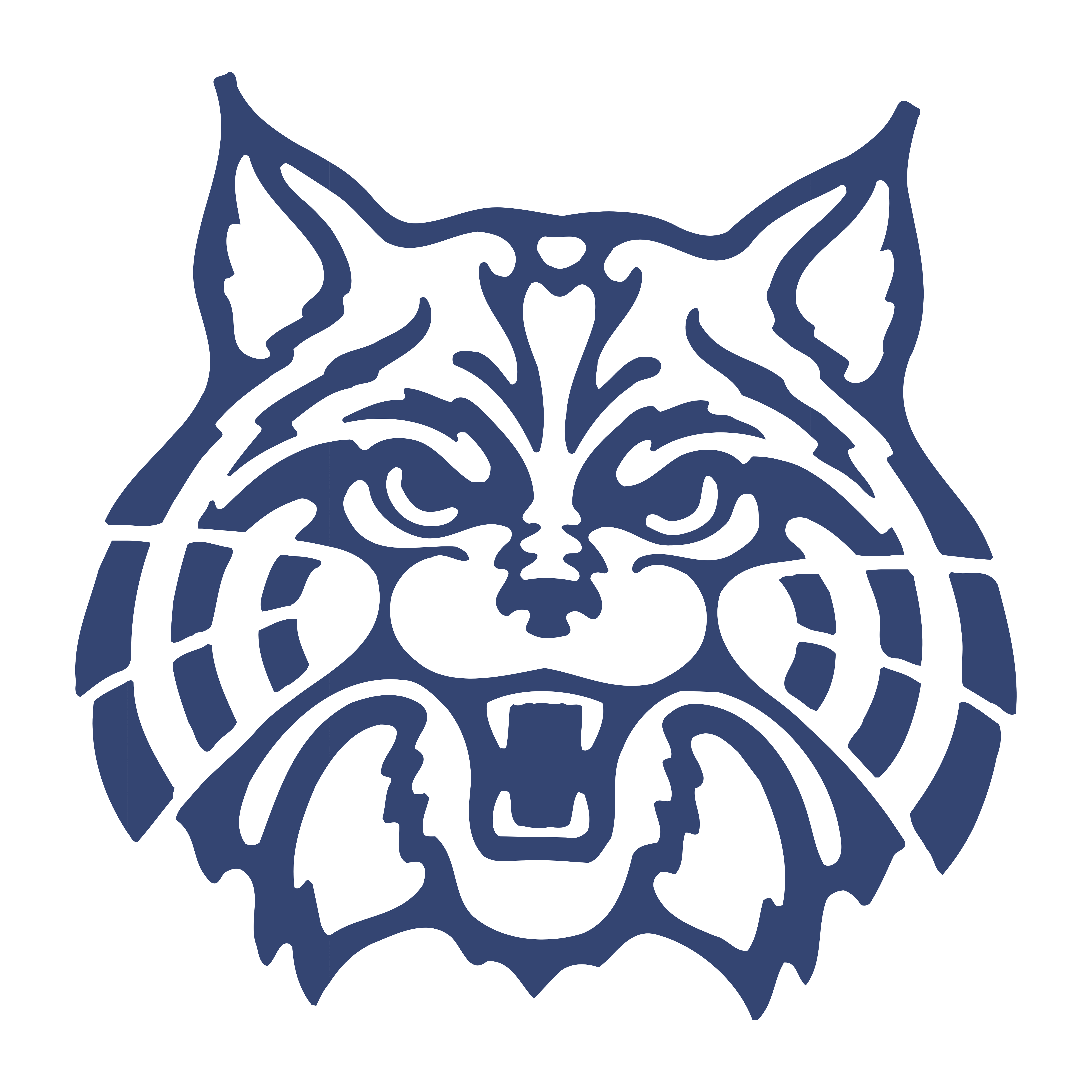 Arizona Wildcats.