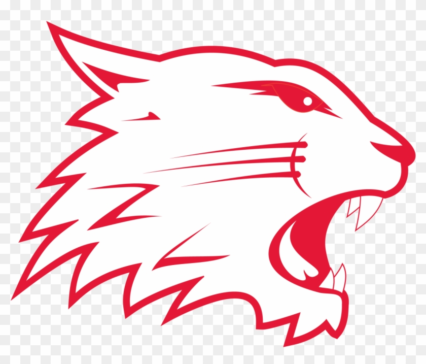 Swindon Wildcats.