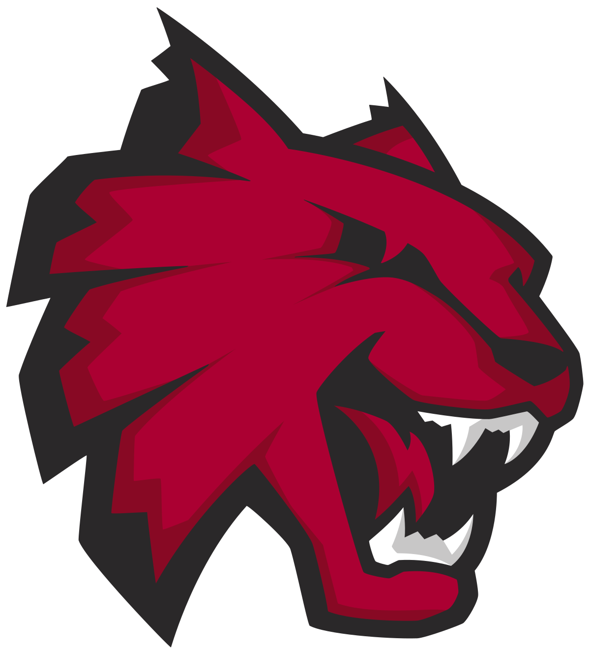 Central Washington Wildcats.