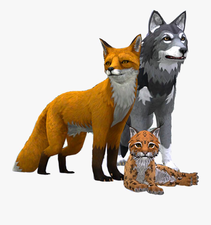 Wildcraft Fox Vs Wolf , Free Transparent Clipart.