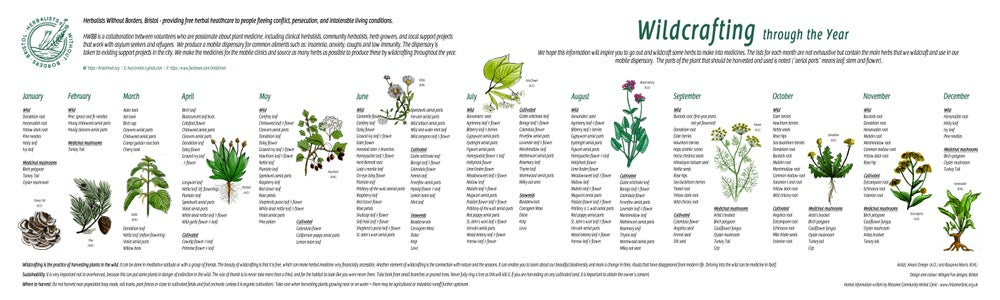 \'Wildcrafting through the year\' poster (SINGLE).