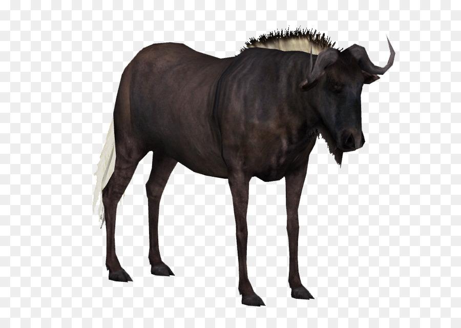 Wildebeest clipart Antelope Horn Blue wildebeest clipart.