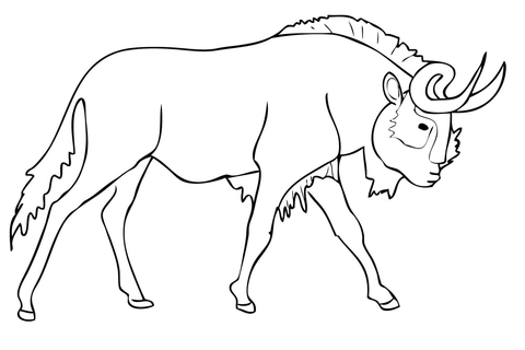 Black Wildebeest (Gnu) coloring page.