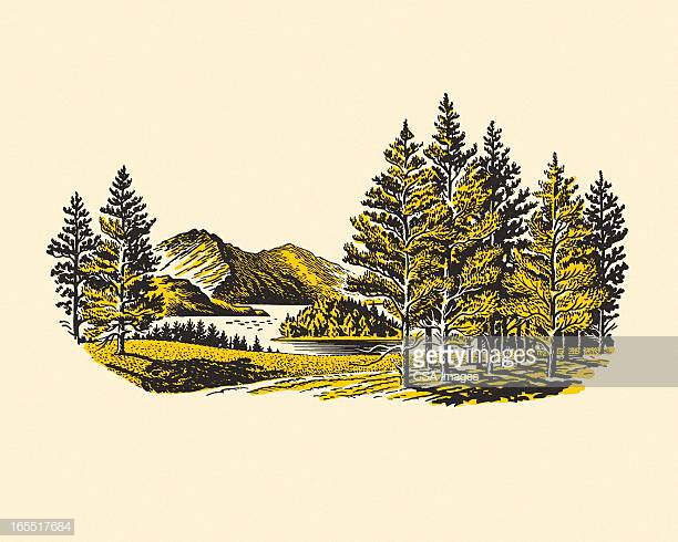 60 Top Wilderness Stock Illustrations, Clip art, Cartoons, & Icons.