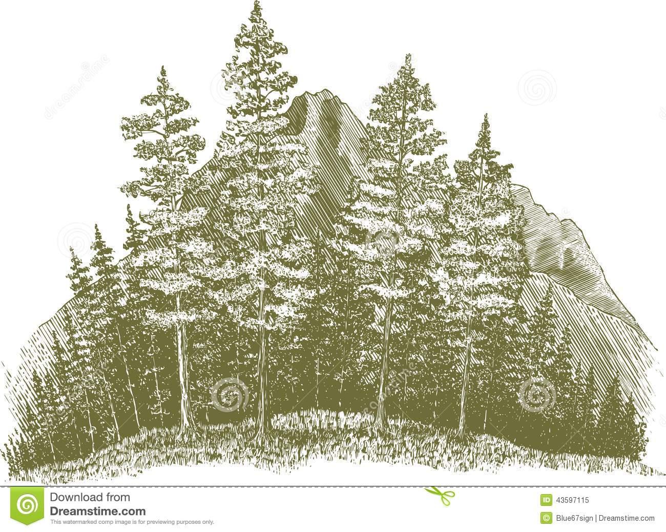 Woodcut Wilderness Stock Vector.