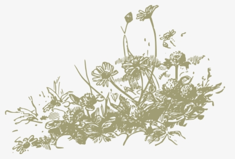 Free Wildflower Clip Art with No Background.