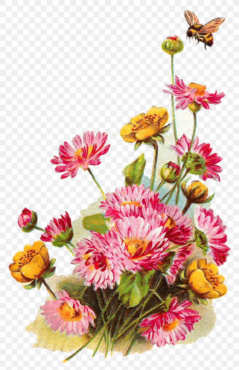 Wildflower Clip Art, PNG, 958x1487px, Flower, Annual Plant.