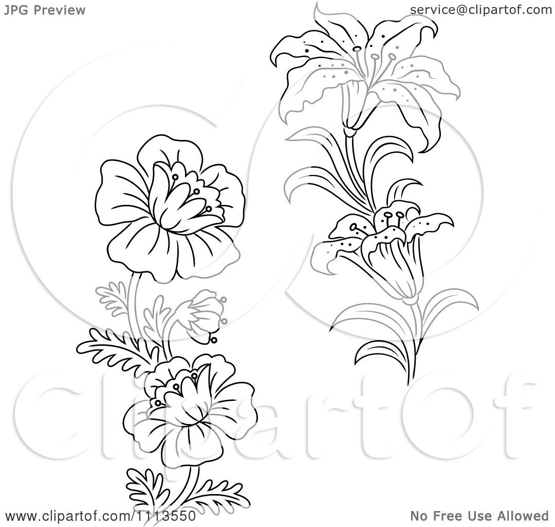 Wildflower Black And White Clipart.