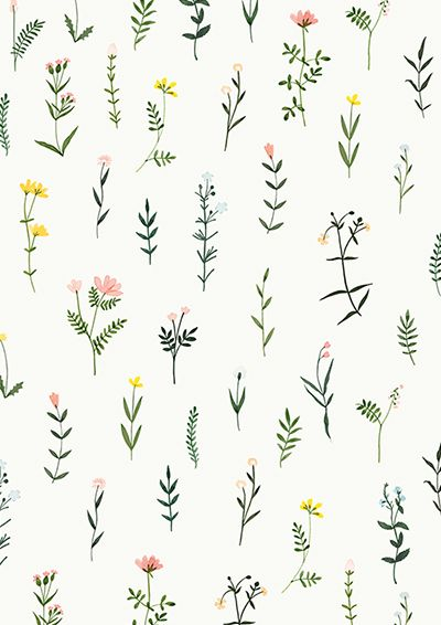 Botanical Clipart Wildflower Hand Drawn Floral Watercolor.