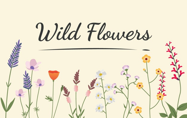 Wildflower Vectors, Photos and PSD files.