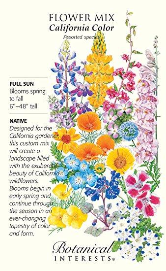Amazon.com : California Color Wildflower Seeds.