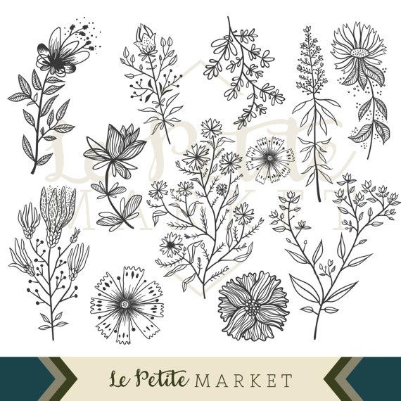 Wildflower Clip Art Set, Flower Illustration Clipart, Hand Drawn.