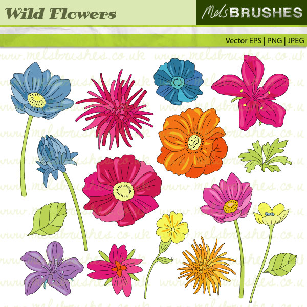 Clipart wildflowers.