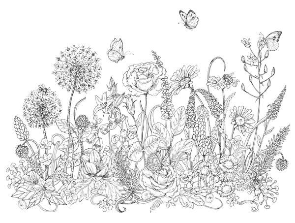 Pollinators and Wildflowers Coloring Page.