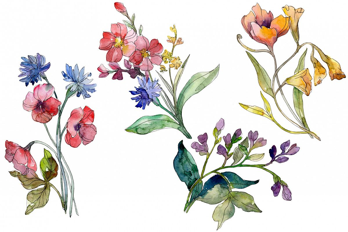Wildflowers the beauty Watercolor png.