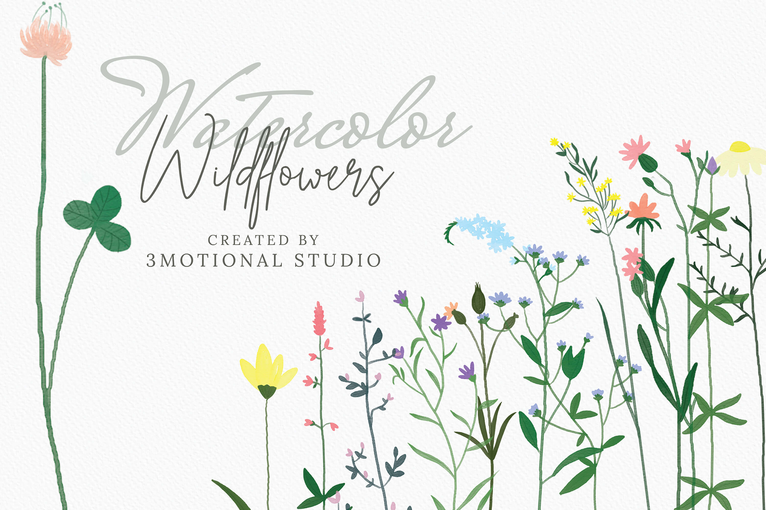Watercolor Wildflowers high res png.