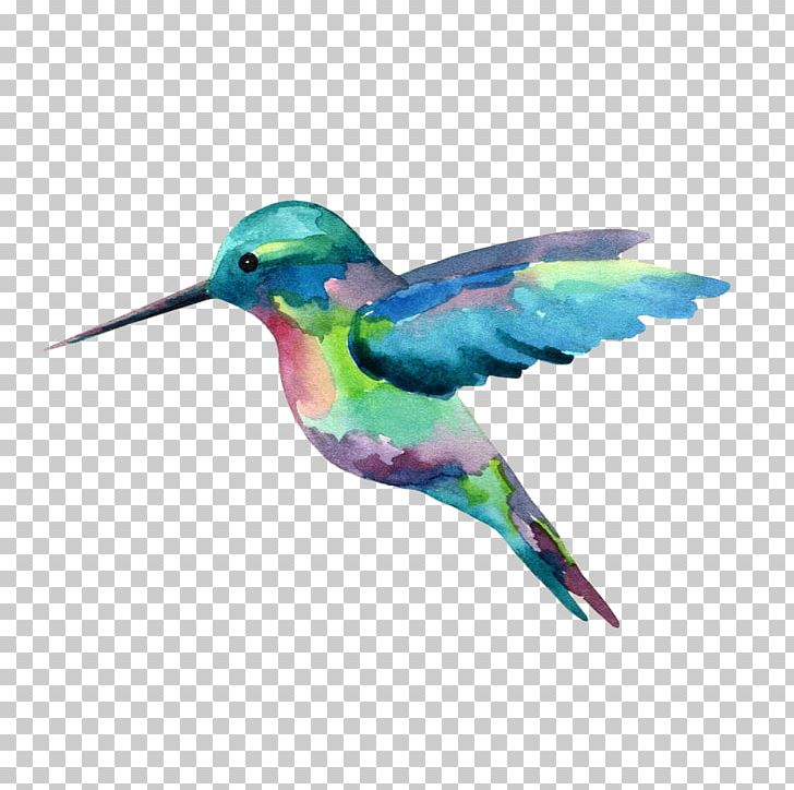 Hummingbird Watercolor Painting PNG, Clipart, Art, Artist.