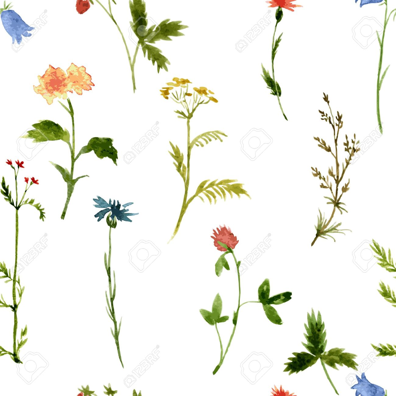 Vector Seamless Pattern With Watercolor Wild Flowers And Grass.