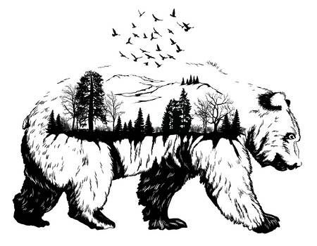 478,587 Wildlife Stock Illustrations, Cliparts And Royalty Free.