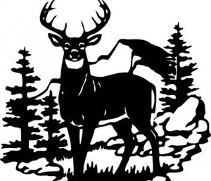 DEER SCENE WILDLIFE DECAL 10x 14LARGE Black Or White.