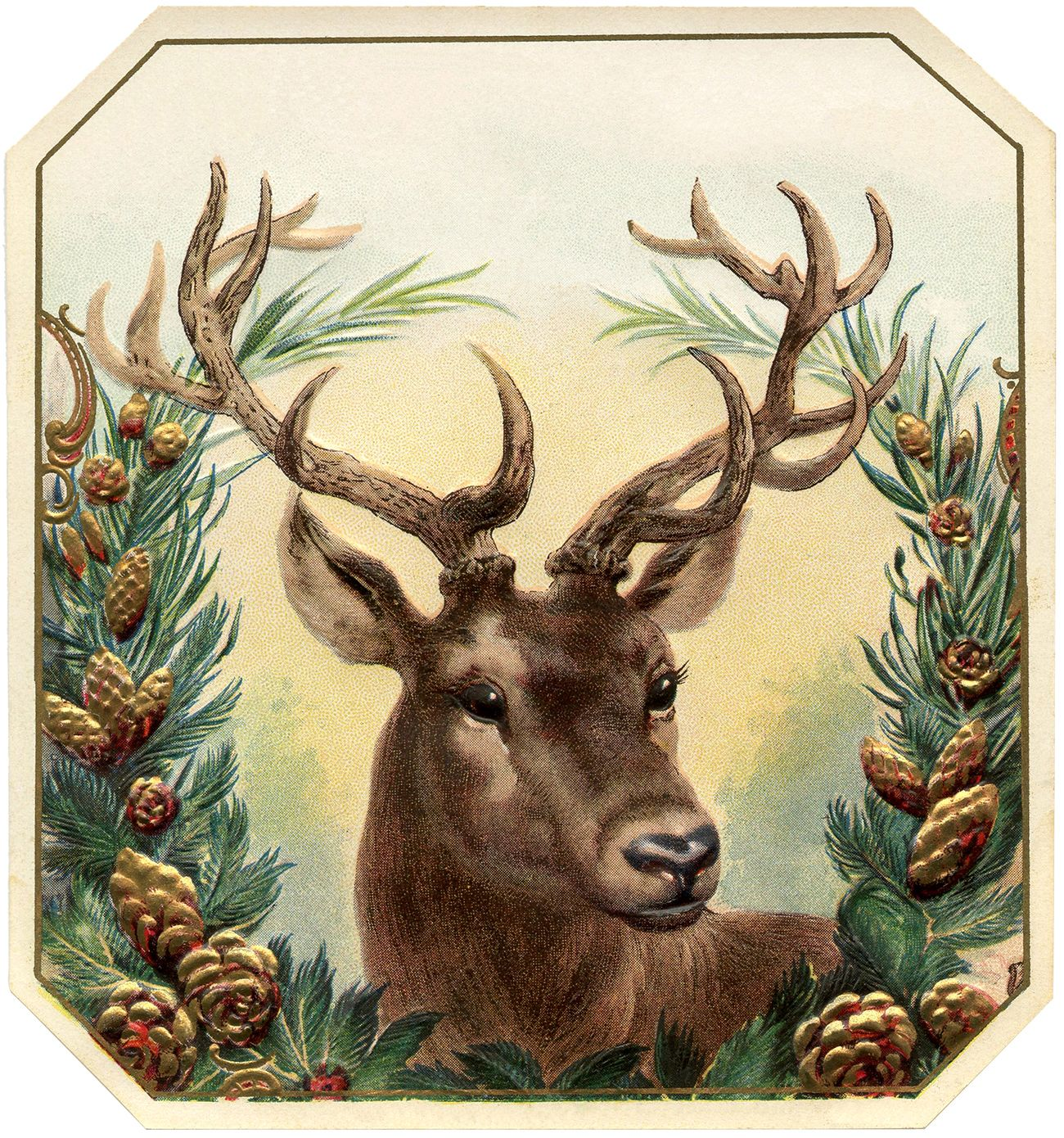 12+ Deer and Antlers Clipart!.