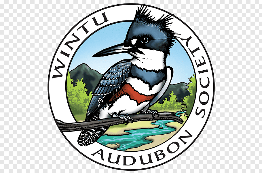 Wildlife Society cutout PNG & clipart images.