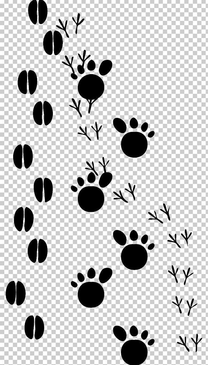 Paw Animal Track Footprint Animal Print PNG, Clipart, Animal.