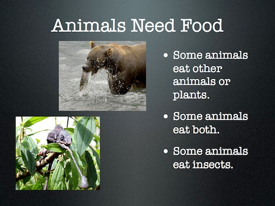 Needs Of Animals Clipart.