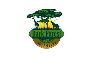 Wildlife & Safari Logo Design.
