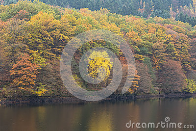 Eifel Germany Stock Photos, Images, & Pictures.