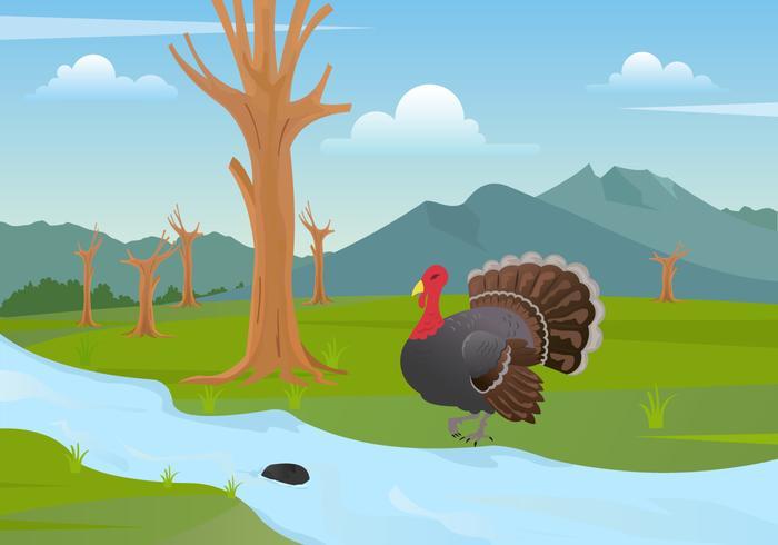 Wild Turkey Illustration Vector.