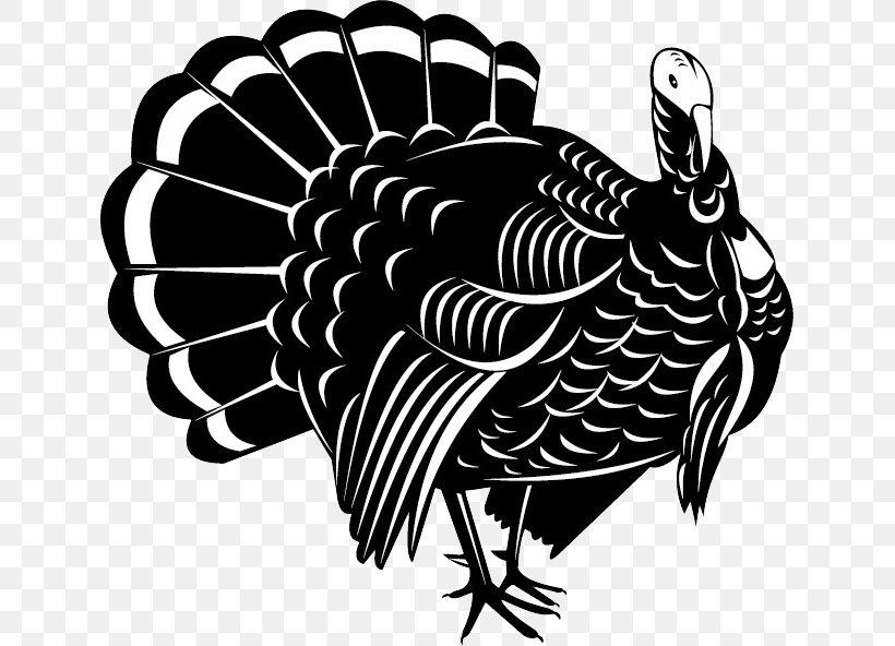Wild Turkey Vector Graphics Illustration Stock Photography.