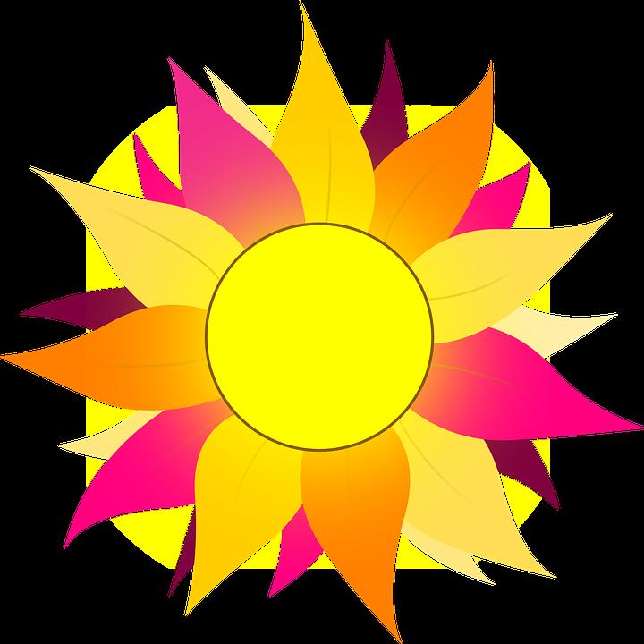 Free vector graphic: Sun, Flower, Orange, Pink, Wild.