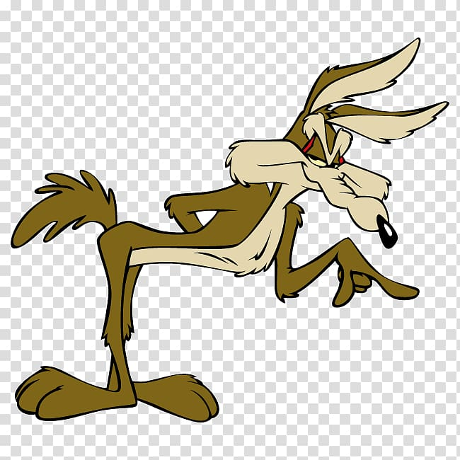 Wile E. Coyote and the Road Runner Cartoon , Wile Coyote.