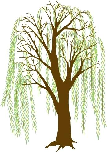 Willow Tree Images Free Home Improvement Cast Now Clip Art Library.