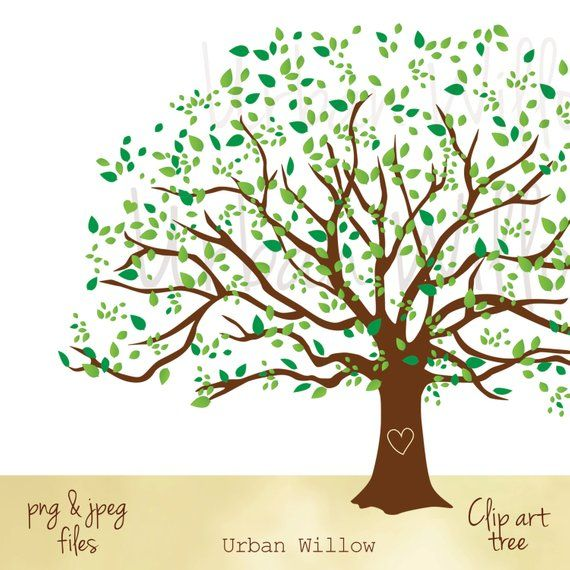 Clipart Natural Tree, Large Family Tree Graphic, Commercial.