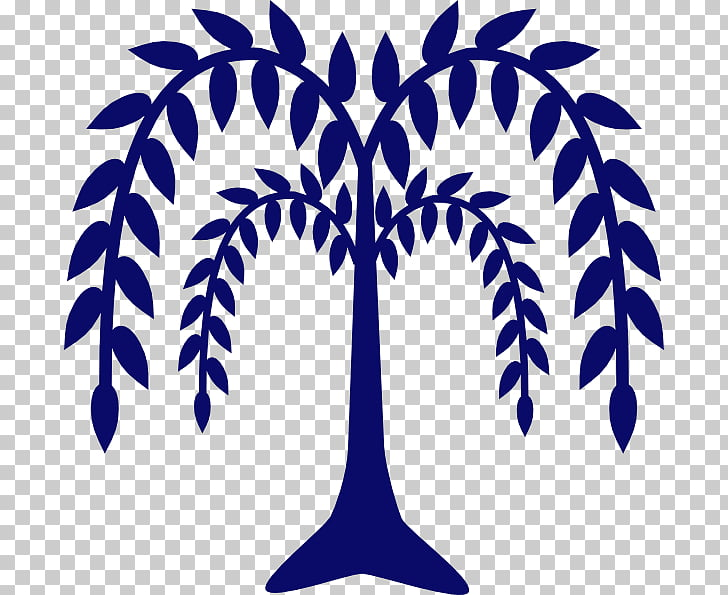 Tree Weeping willow , tree PNG clipart.