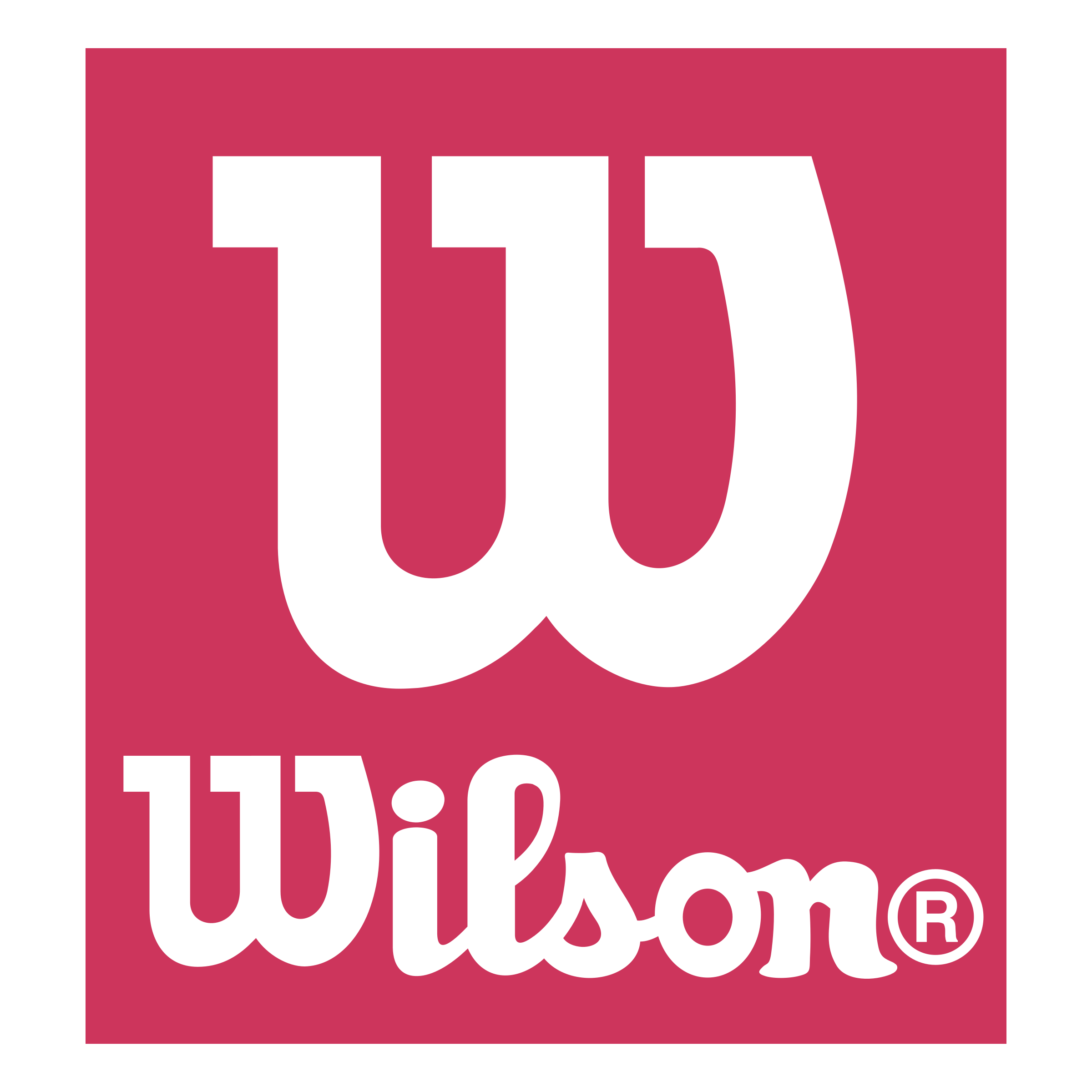 Wilson Logo PNG Transparent & SVG Vector.