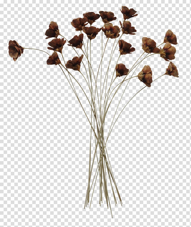 Brown petaled flowers, Flower, Japanese cartoon decoration.