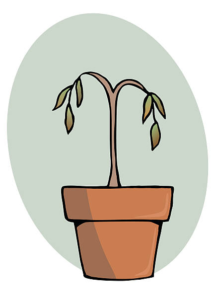 Dying Plants Clipart.