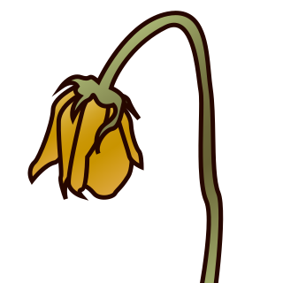 Wilted flower clipart 1 » Clipart Station.