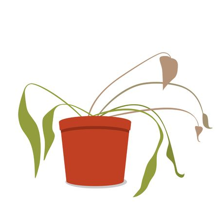 101 Wilted Plant Stock Vector Illustration And Royalty Free Wilted.