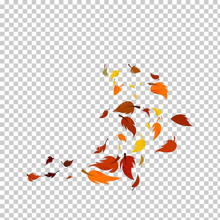 Leaf, Leaves falling in the wind, leaves illustration PNG.