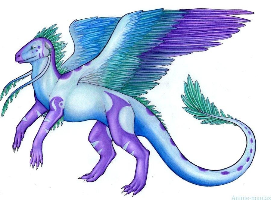 Anime Wind Dragon.