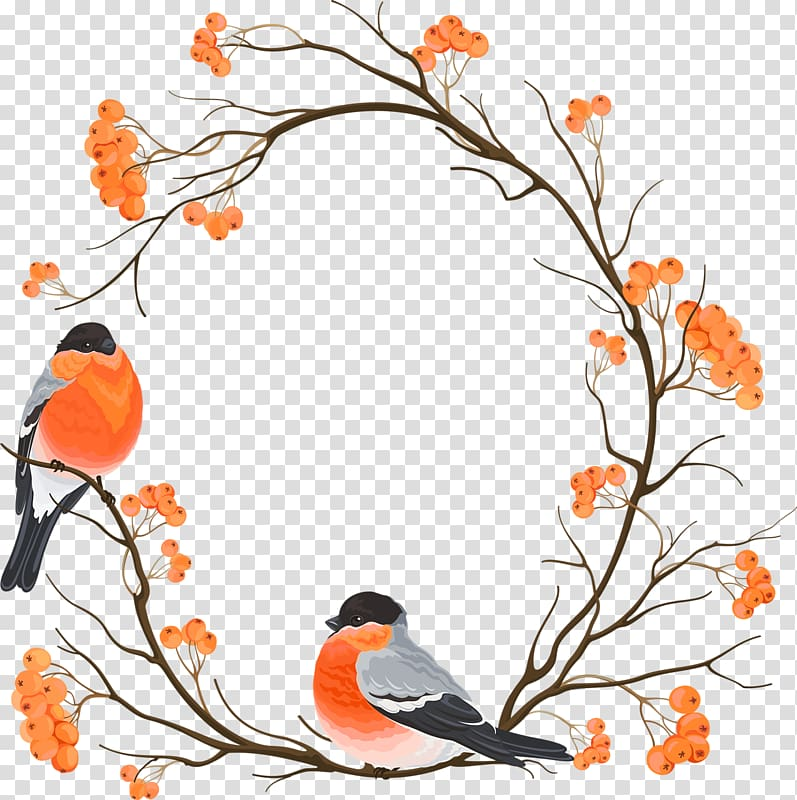 Eurasian bullfinch Drawing Embroidery , Chinese wind round.