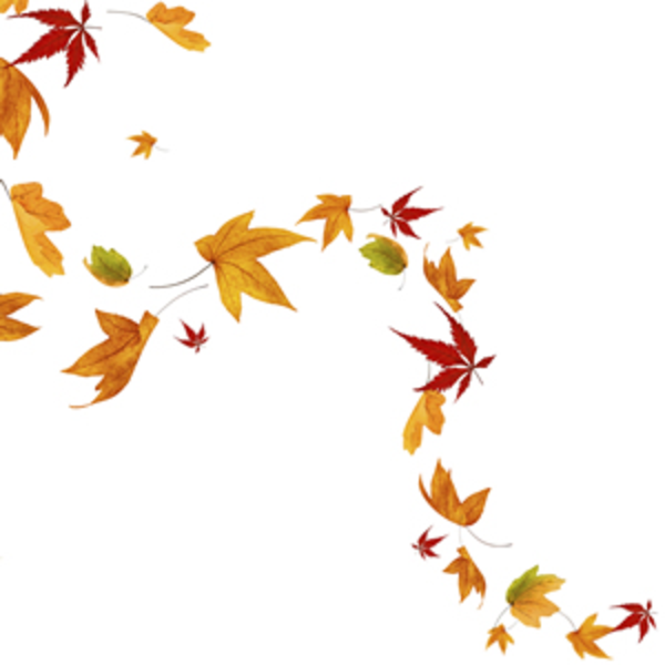 Windy Leaves Clipart.