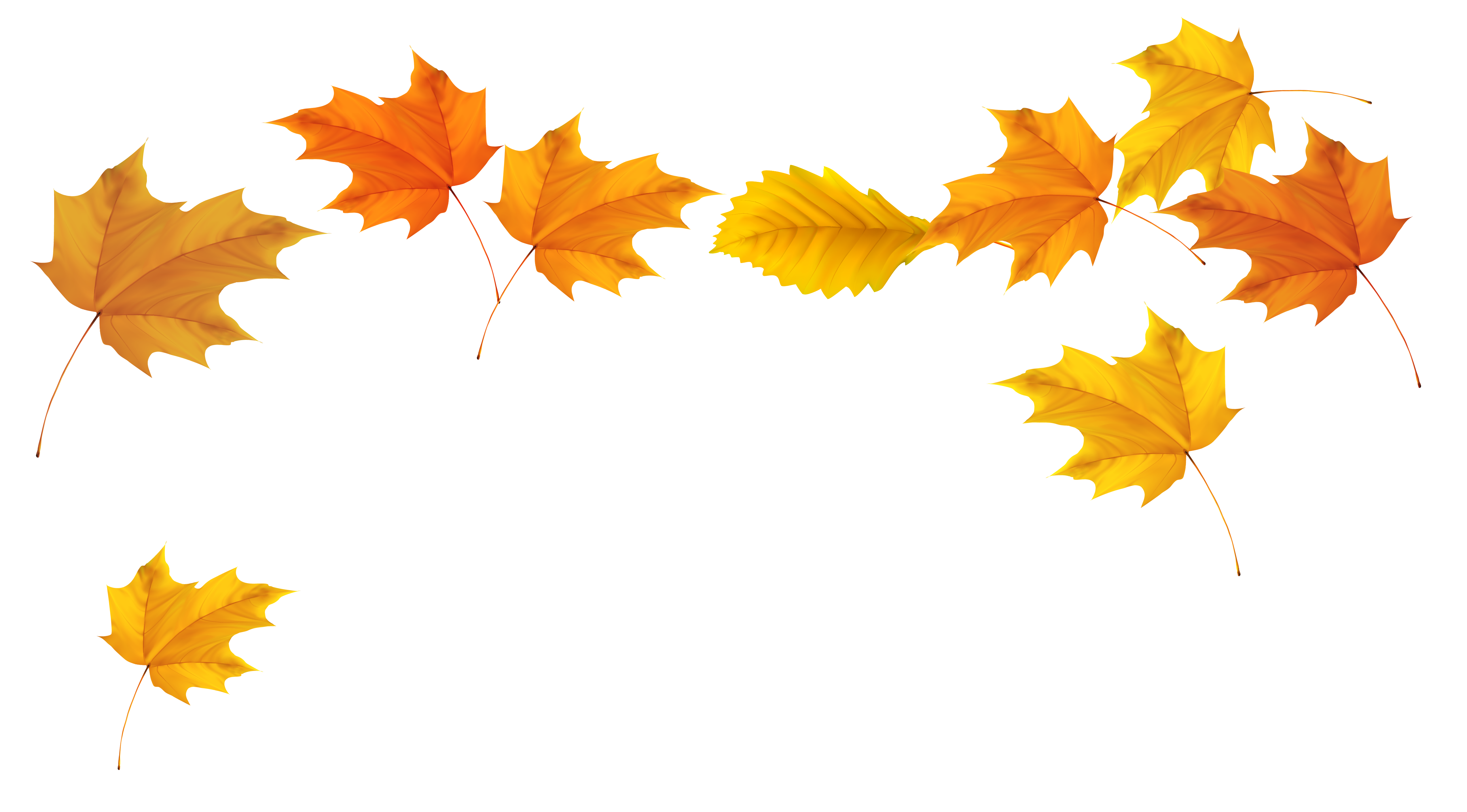 2808 Fall Leaves free clipart.