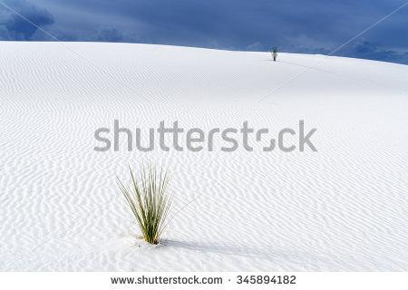 Desert Sand Stock Photos, Royalty.